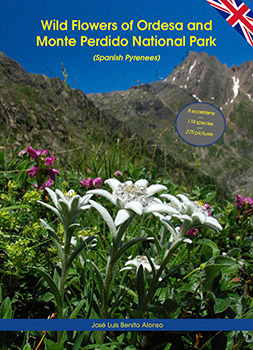 Willd Flowers of Ordesa and Monte Perdido National Park (Spanish Pyrenees)